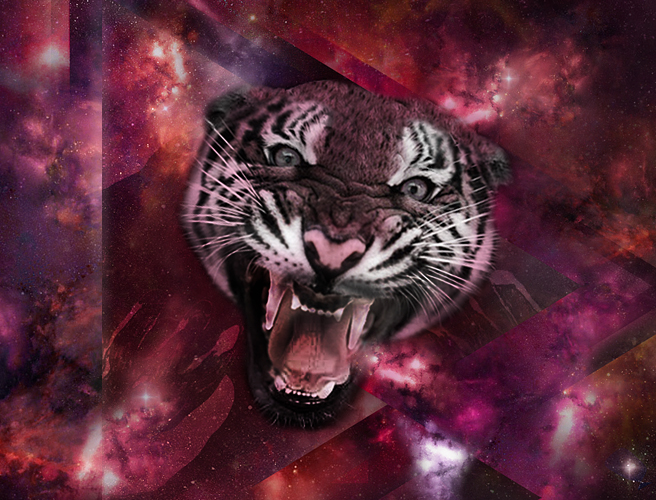 2_space_tiger2