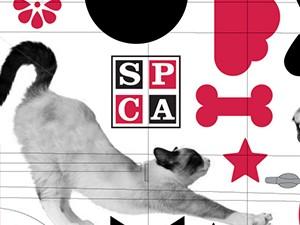 SPCA_thumb